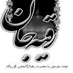 هیات متوسلین به حضرت رقیه خاتون(ع) گوریگاه