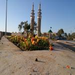 هیئت مکتب الزهرا (س)امامزاده محمد(ع) گوریگاه